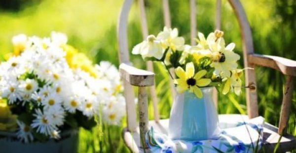 Κι Όμως, Αυτά τα Λουλούδια Μπορείτε να τα Φάτε!
