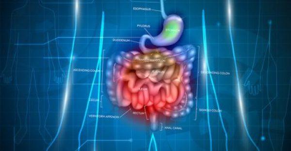 Γαστρικός καρκίνος: Τα σημάδια που μπορούν να οδηγήσουν σε έγκαιρη διάγνωση
