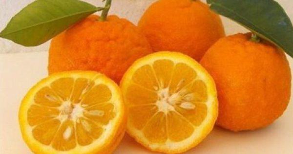 Δίαιτα με πορτοκάλια για αδυνάτισμα και υγεία