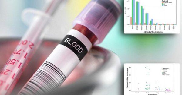 Λογισμικό Η/Υ διαγιγνώσκει τον καρκίνο από ένα δείγμα αίματος