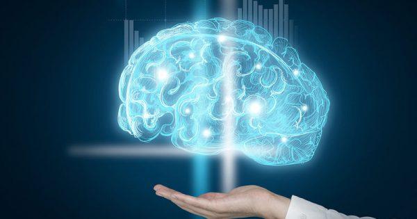 Οι επιστήμονες αποκαλύπτουν το χόμπι που κρατά τον εγκέφαλο νέο!