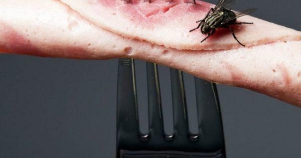 Τρία κόλπα για να κρατήσετε τις μύγες μακριά από το πασχαλινό τραπέζι