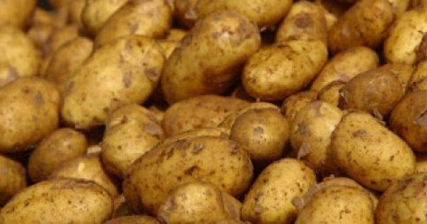 Μεγάλη προσοχή: Αυτές είναι οι πατάτες που ΔΕΝ ΠΡΕΠΕΙ να τρώτε [photo]