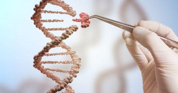 Νέες ανακαλύψεις γονιδίων που εμπλέκονται στην πρόωρη εφηβεία και στον καρκίνο
