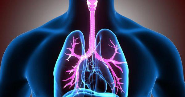 Kαρκίνος οισοφάγου: Παράγοντες κινδύνου, συμπτώματα & προδιαθέτουσες καταστάσεις