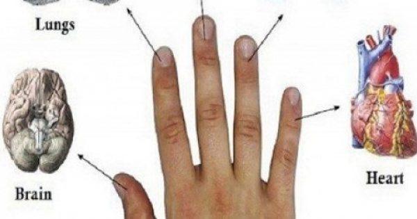 Κάθε δάχτυλο μας συνδέεται με 2 όργανα: Ιαπωνικοί Μέθοδοι για θεραπεία σε 5 λεπτά