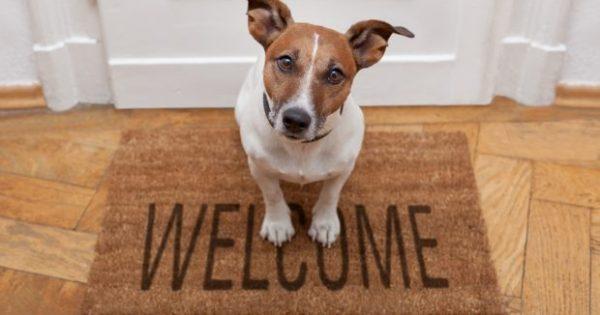Έτσι θα Προετοιμάσετε το Σπίτι σας Πριν το Βάλετε στο Airbnb!