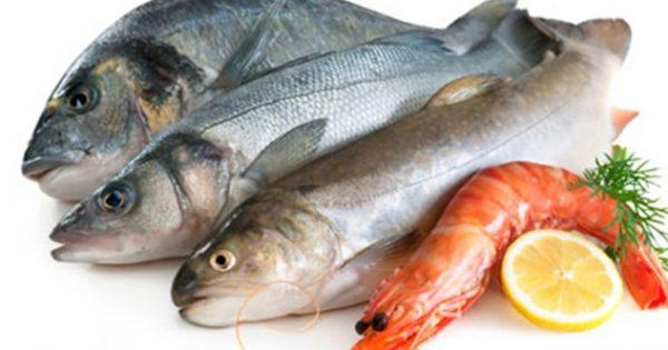 Τρώμε ψάρια από τις ελληνικές θάλασσες σε ποσοστό 93%