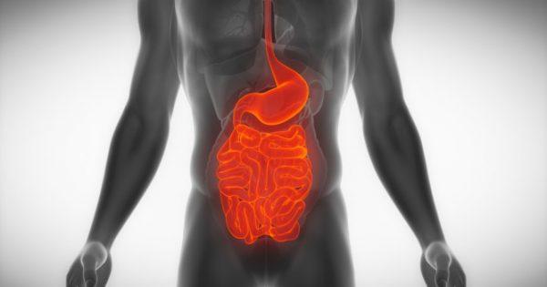 Σύνδρομο δυσαπορρόφησης: Προσοχή στα συμπτώματα – Ποιοι κινδυνεύουν