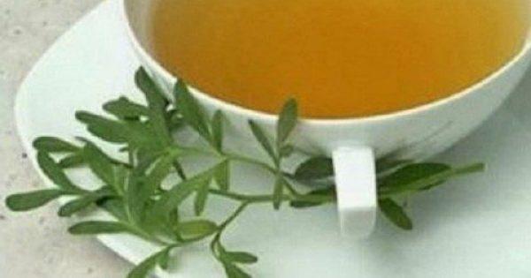 9 βότανα που ηρεμούν τα νεύρα και μειώνουν την ανησυχία