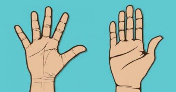 8 Παράξενες αλήθειες που αποκαλύπτουν τα χέρια σας για την προσωπικότητά σας! Πολύ έγκυρες πληροφορίες!