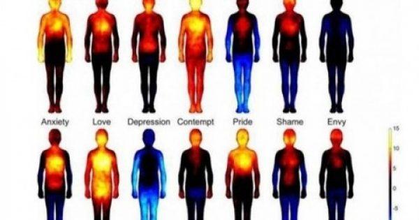Ψυχοσωματικά νοσήματα: Σε ποια σημεία μας χτυπά η θλίψη;