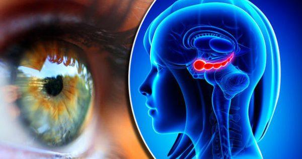Αλτσχάιμερ: Το σημάδι στα μάτια που μπορεί να είναι πρώιμο σημάδι της εκφυλιστικής νόσου