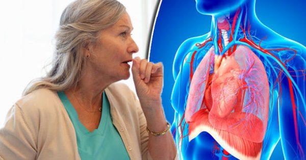 Κρυπτοκοκκίαση: Βήχας και πόνος στο στήθος συνδέονται με θανατηφόρο εγκεφαλική μόλυνση! [vids]