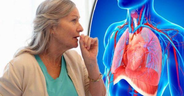 Κρυπτοκοκκίαση: Βήχας και πόνος στο στήθος συνδέονται με θανατηφόρο εγκεφαλική μόλυνση! ΒΙΝΤΕΟ
