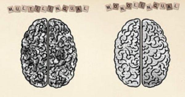 Τι πραγματικά συμβαίνει στον εγκέφαλο των δίγλωσσων ανθρώπων;