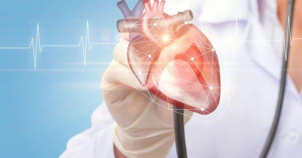 Πόσο αυξάνεται το βάρος της καρδιάς όσο αυξάνεται ο δείκτης μάζας σώματος