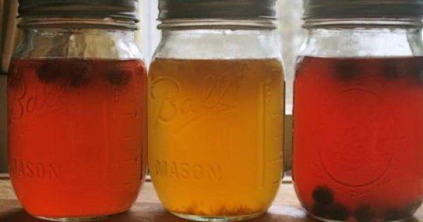 7 λόγοι για τους οποίους το τσάι Κομπούχα θεωρείται το «ελιξίριο της αθανασίας»