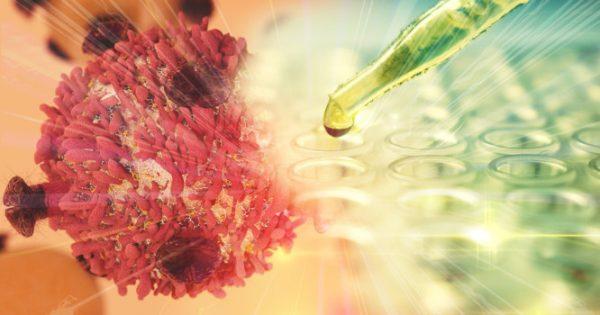 Καρκίνος: Ενεργοποιούν πρωτεΐνη-δολοφόνο που σκοτώνει ΜΟΝΟ τα καρκινικά κύτταρα [vid]