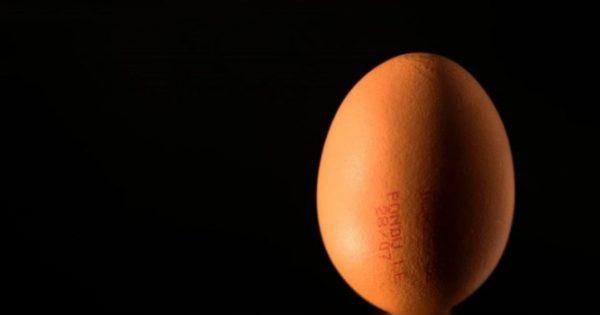 Μεταλλαγμένες κότες κάνουν αυγά γεμάτα με αντικαρκινικά φάρμακα! [vid]