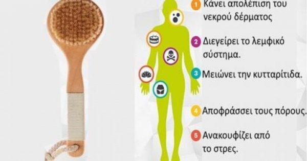 Ξεκινήστε το Στεγνό Βούρτσισμα Σώματος για να Απαλλαγείτε από την Κυτταρίτιδα & τις Τοξίνες