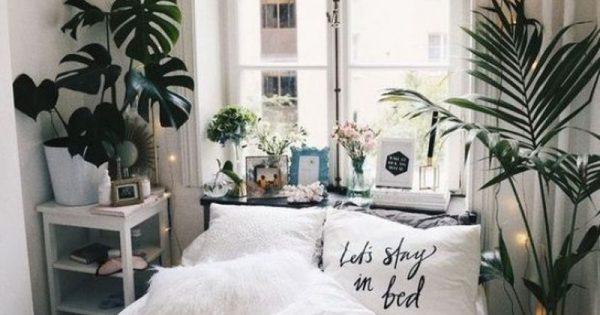 Διακόσμησε το δωμάτιο σου με κάποιο από αυτά τα φυτά και εξασφάλισε καλύτερο ύπνο