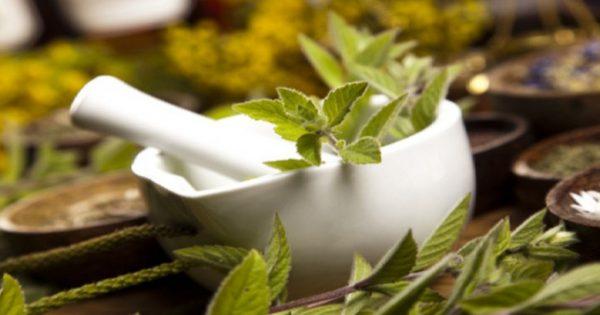 Μάθετε τι είναι η όξινη διατροφή- Ποια βότανα βοηθούν στην αντιμετώπιση των προβλημάτων της