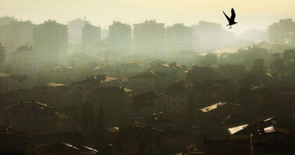 Η ατμοσφαιρική ρύπανση παράγοντας κινδύνου για οστεοπόρωση και κατάγματα στους ηλικιωμένους