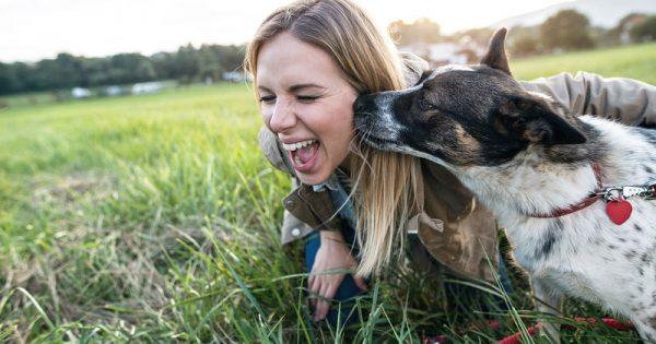 Χρόνια ζωής κερδίζουν όσοι μοιράζονται τη ζωή τους με έναν σκύλο