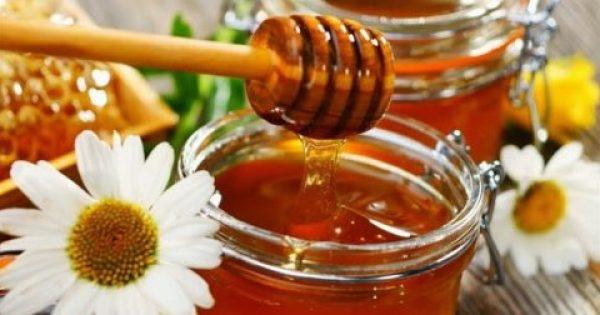 Το μέλι και τα 8 πιο σημαντικά οφέλη του…