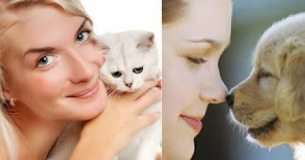 Λάτρεις της γάτας ή του σκύλου; Ποιος τύπος είστε;