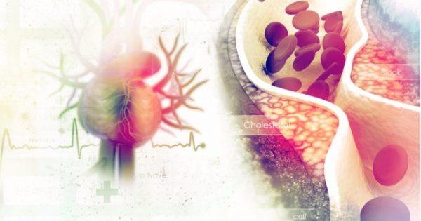Τι είναι η χοληστερόλη και πώς την χρησιμοποιεί ο οργανισμός – Πότε υπάρχει πρόβλημα [vid]