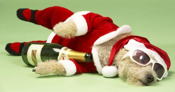 Κραιπάλες γιορτών: 4 θρεπτικά συστατικά για να προλάβετε τις επιπτώσεις