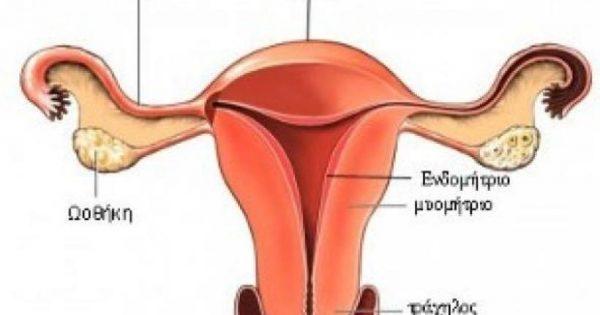 Ποια συμπτώματα προειδοποιούν για καρκίνο των ωοθηκών;
