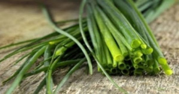 Το φυτό που μας προστατεύει απο τον καρκίνο και βοηθά στην ψυχική διάθεση!