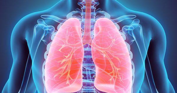 Οι τροφές που επιβραδύνουν τη γήρανση των πνευμόνων