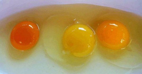 ΜΕΓΑΛΗ ΠΡΟΣΟΧΗ με τα αυγά!!! – Τί μαρτυρά το χρώμα του – Τί πρέπει να προσέχετε!!!