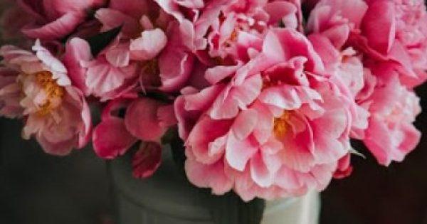 Το κόλπο για να διατηρήσεις τα λουλούδια στο βάζο περισσότερες μέρες