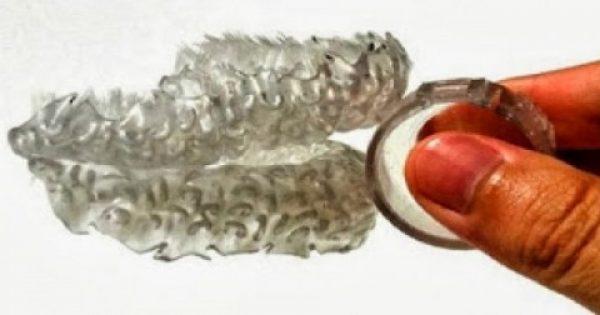 Βρέθηκε η λύση για όσους βαριούνται να βουρτσίσουν τα δόντια τους! [βίντεο]