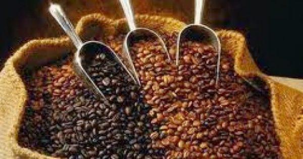 Ποιο είδος καφέ μας κρατάει ξύπνιους στο τιμόνι;