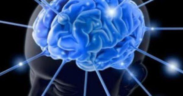 ΑΥΤΟΣ ΕΙΝΑΙ Ο «ΒΑΣΙΛΙΑΣ ΤΩΝ ΦΡΟΥΤΩΝ» Καταπολεμάει τον καρκίνο, μειώνει τη χοληστερίνη και βελτιώνει τη μνήμη