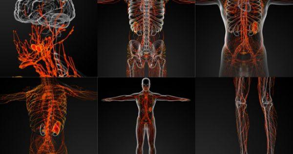 Τα «αθώα» συμπτώματα από την αταξία γλουτένης που προσβάλλει το νευρικό σύστημα – Προσοχή!