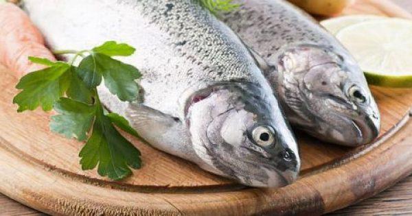 Μύθοι και αλήθειες για τα ψάρια