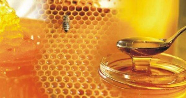 Δείτε τι θαύματα κάνει μία κουταλιά μέλι πριν τον ύπνο!