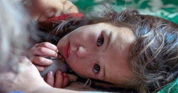 Αυτό το 3χρονο περιπλανιόταν μόνο του σε δάσος της Σιβηρίας επί 11 μέρες. Όταν δείτε όμως ποιος ήταν δίπλα της συνεχώς θα δακρύσετε