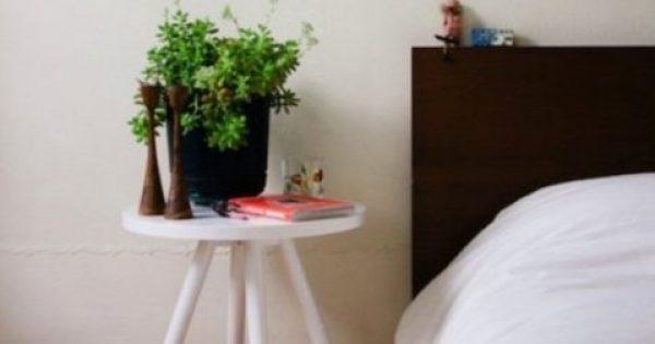 Με αυτά τα φυτά στο δωμάτιο θα κοιμηθείτε σαν… πουλάκια