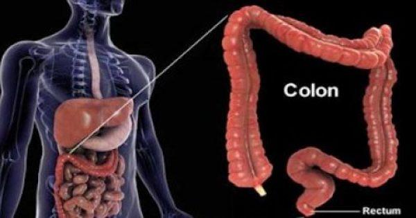 Ρώσος βιολόγος: «Ο θάνατος του ανθρώπου αρχίζει από το στομάχι- Πώς θα καταλάβετε ότι κάτι δεν πάει καλά» (vid)