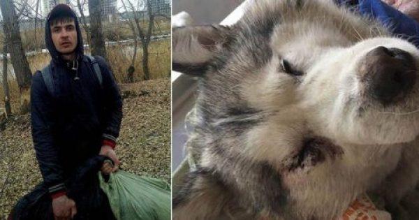 Άντρας έσφαξε και έγδαρε σκύλο για να πουλήσει το κρέας του για κεμπάπ