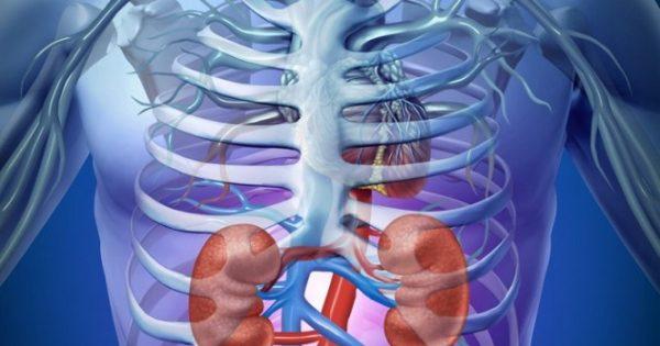 Προσοχή στα σημάδια που δείχνουν νεφρική ανεπάρκεια – Δείτε την λίστα