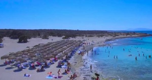 Χρυσή: Αυτή είναι η ελληνική… Χαβάη! [Βίντεο]